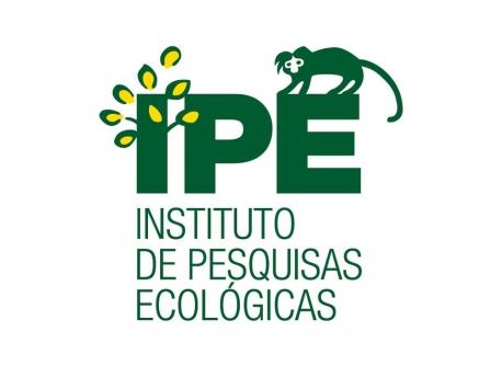 Imagem logo IPÊ